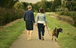 Taking Your Dog for a Walk